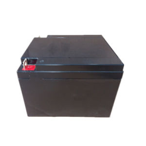 Lead Acid AGM UPS Deep Cycle VRLA Solar Batteries 12V24ah pictures & photos
