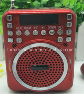 USB TF Card Radio FM Portable Amplifier pictures & photos
