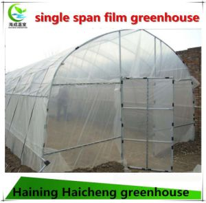 Hot Sale Single Tunnel Plastic Film Green House Supplier for Vegetable Growing pictures & photos