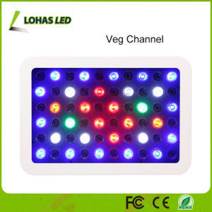 Full Spectrum LED Plant Grow Light with Dimmable Switches pictures & photos