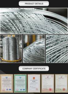 1.0mm Factory Direct Sale Hot Dipped Galvanized Steel Wire/Wire Galvanized pictures & photos