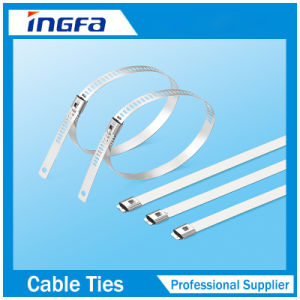 Black Plastic Coated Stainless Steel Cable Zip Ties 350mm pictures & photos