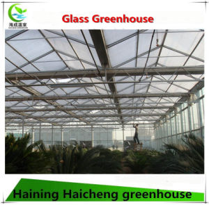 Venlo Type Glass Greenhouse with DIP-Hot Galvanizing Structure for Sale pictures & photos