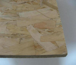 Best Quality OSB Board pictures & photos