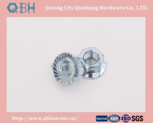 Hex Flange Nuts (M5-M30 Zinc Planted) pictures & photos