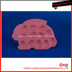 High Quality Plastic Injection Ice Box/Ice Boxes Mould