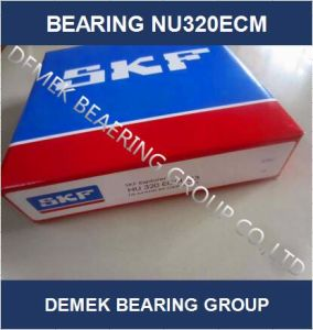 Cylindrical Roller Bearing Nu320 Ecm with Brass Cage pictures & photos