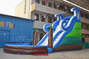 Commercial Inflatable Water Slide with Swimming Pool (CHSL384-2) pictures & photos