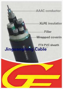 Yjlhv All Aluminum Alloy Cable XLPE/PVC pictures & photos