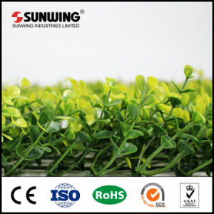 China Supplier PE Material Artificial Hedge for Home Garden Decor pictures & photos