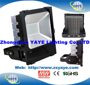 Yaye 18 Best Sell Competitive Price 250W Outdoor LED Flood Lights with CREE/MW/Ce/RoHS/5 Years Warranty pictures & photos