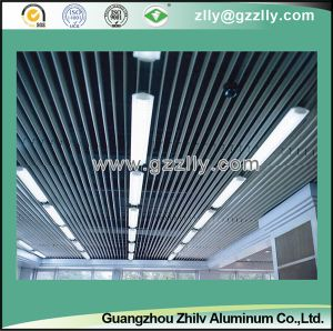 Aluminum False in-Line Style Screen Ceiling for Indoor Decoration-Sc-101 pictures & photos