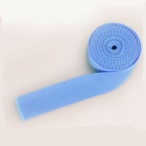 Heavy Duty Blue 3 Inch PP/Polypropylene Webbing Tape with Fasteners pictures & photos