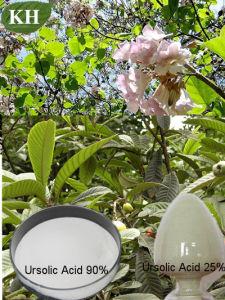 Loquat Leaf Extract Ursolic Acid pictures & photos