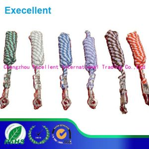 Colorful Horse Lead Rope with Heavy Swivel Snaps