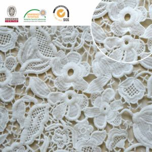 Mesh Lace Fabric, Floral Pattern Delicate and Splendid, Good for Home Textles 2017 E20045 pictures & photos
