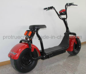 1000W Citycoco Ebike with Lithium Battery pictures & photos