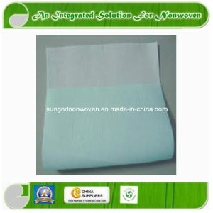 PE Coated Airlaid Paper /PE Coated Tissue /PE Coated PP pictures & photos