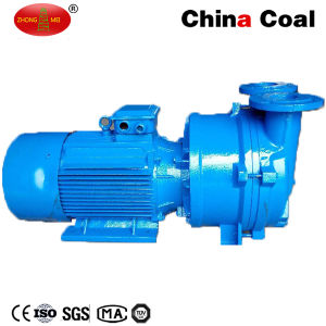 2BV2070 Single Stage Water Vacuum Pump pictures & photos