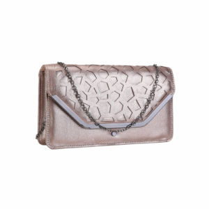 Champagne Metal Envelop Clutch Bag (MBNO041157) pictures & photos