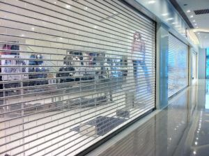 Commercial Stainless Steel Transparent Roller Shutter Doors pictures & photos