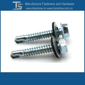 Good Quality Zinc Plated Slotted Hex Head Roofing Screw pictures & photos