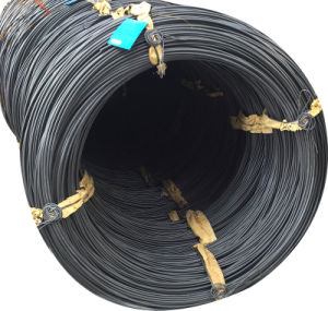 Steel Wire Coil 10b38 for Making Fasteners pictures & photos