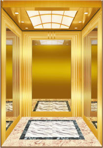Luxury Gorgeous Mrl Restaurant Elevator for Sale