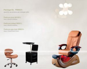 Pedicure Foot SPA Chair (M9023) pictures & photos