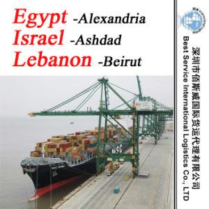 "Ocean Container Shipment Alexandria (Egypt) ; Ashdad (Israel) ; Beirut (Lebanon) -20""/40"" pictures & photos"