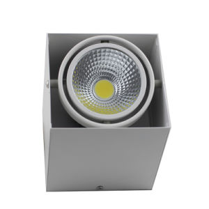 One Head/Two Heads COB LED Grille Light pictures & photos