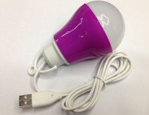 5W 10 LED Plastic Multi Color USB Light Lamp Bulb pictures & photos