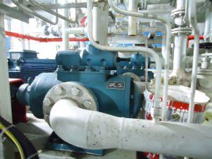 Oil Pump for Power Plant pictures & photos
