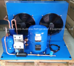 Maneurop Condensing Unit (HGM/HGZ seris) pictures & photos