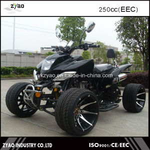 Adult ATV EEC Legal on Street Hot Sale pictures & photos