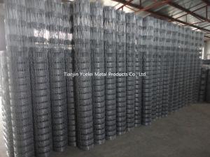 Best Price Galvanized Steel Wire Mesh/Galvanized Wire Mesh/Reinforcing Galvanized Steel Construction Welded Wire Mesh pictures & photos
