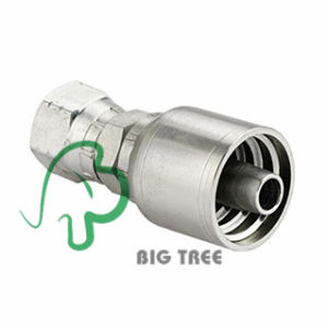 Bsp Female 60 Degree Cone One Piece Hose Fitting pictures & photos