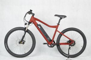 2018 New Model Inner Battery Travel Electric Bike pictures & photos