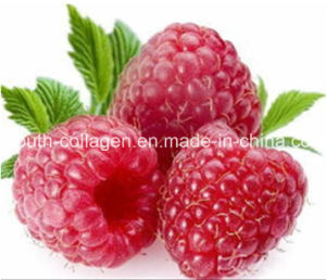 EU Quality, GMP 100%Natural Organic Wild Blaeberry/Raspberry Fruit Juice, King Anthocyanins, Anticancer, Radiation Resistance, Anti-Aging,Killer of Liver Cancer pictures & photos