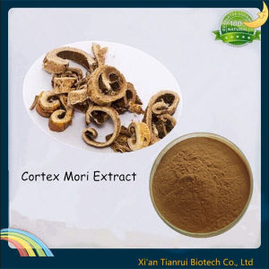 White Mulberry Root-Bark Extract, Cortex Mori Extract pictures & photos