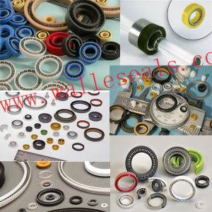 High Performance Spring Energized Seals pictures & photos