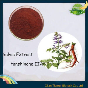Natural Danshen Root Extract, Salvia Miltiorrhiza Extract Tanshinone Iia pictures & photos