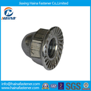 Stainless Steel Flange Hex Cap Nuts/Flange Acron Cap Nuts pictures & photos
