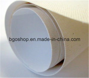 "Advertising Material Polyester Fabric Digital Printing (20""X24"" 1.9cm) pictures & photos"