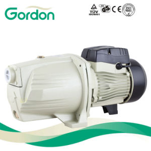 Self-Priming Jet Water Pump for Gardon with Brass Impeller pictures & photos