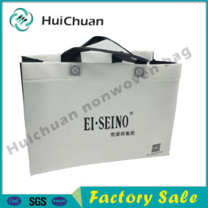 Folding Recyclable Non Woven Shopping Bag pictures & photos