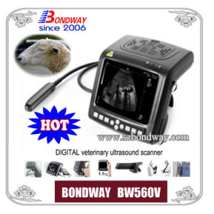 Digital Veterinary Ultrasound Scanner for Equine, Bovine, Swine, and Other Small Animal Scanning pictures & photos