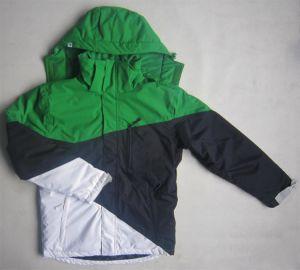 Ski Jacket with Profashional Design for Man