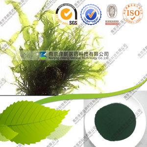 FDA Wholesale Plant Powder 60%-70% Protein Spirulina pictures & photos