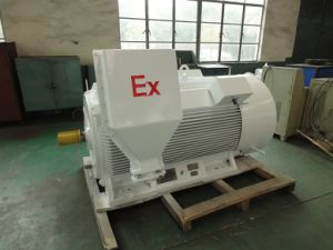 Explosion Proof (High voltage 3kv, 6kv, 10kv) Three Phase Motor pictures & photos